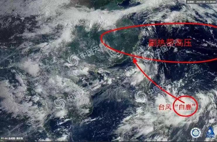 """第11号台风""""白鹿""""已生成!接下来宁波的天气......"""